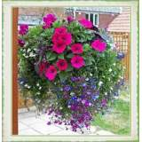 Bedding Hanging Basket 14""